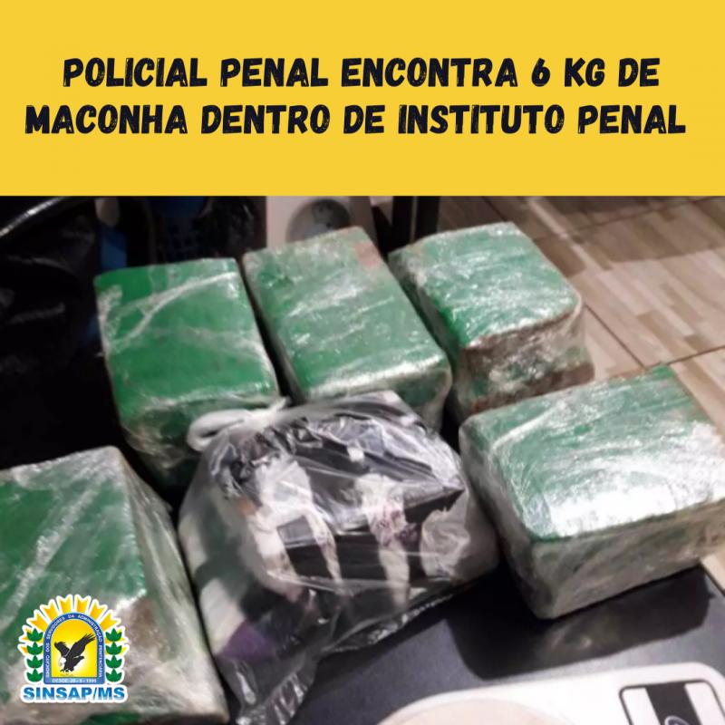 Policial Penal encontra 6 kg de maconha dentro de Instituto Penal